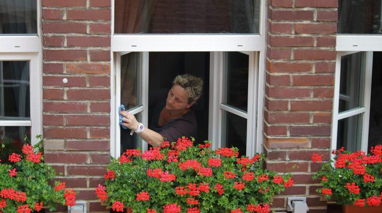 Czyste okna w domu